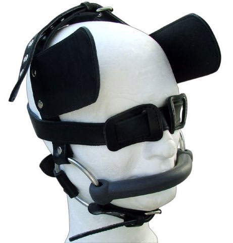 Head Harness for Pony Play