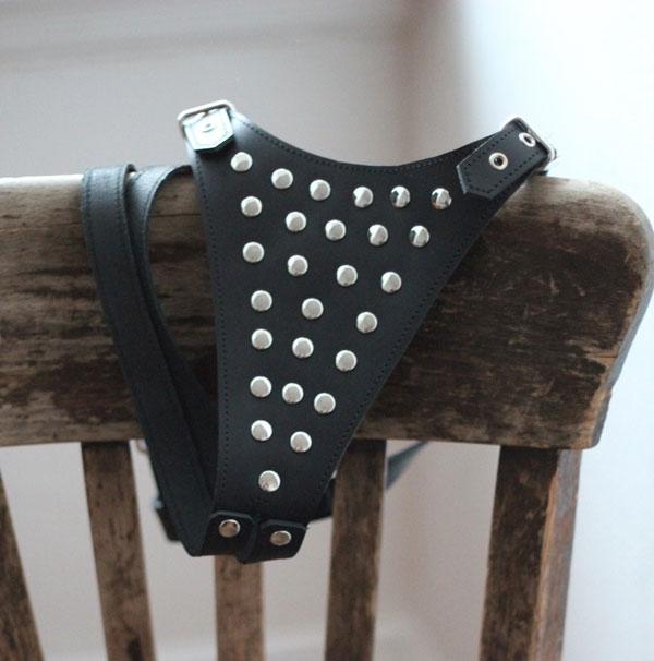 Daring Leather Bondage Thong