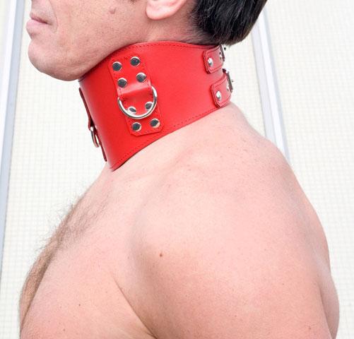 High Posture Collar