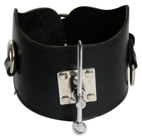 Posture Collar with Pin