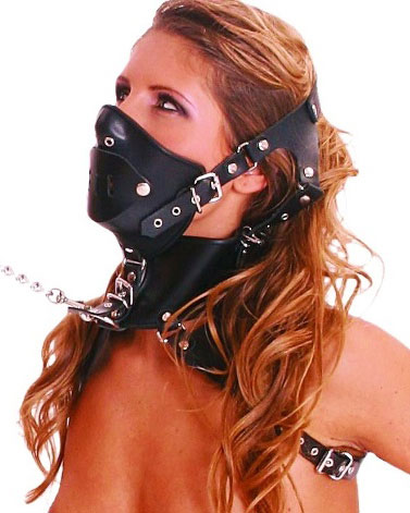 Head Harness with Mask and Mouth Panel