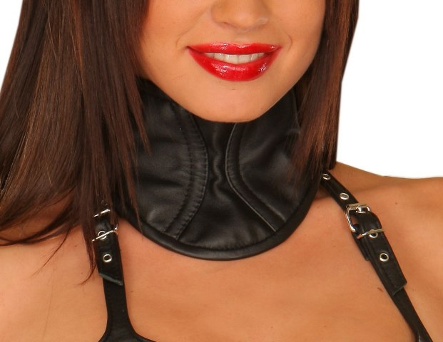 Soft Leather Fetish Collar