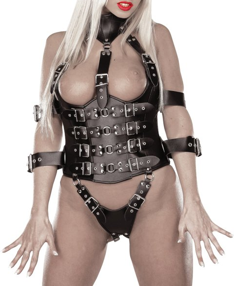 BDSM Harness with Arm Restraints
