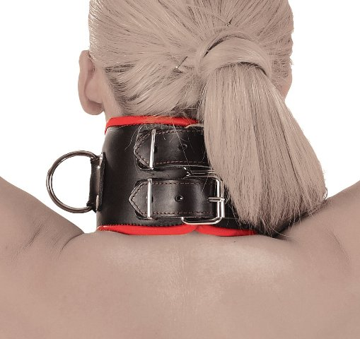 BDSM Posture Collar with Soft Padding