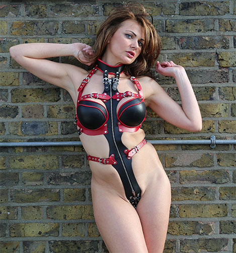 Unique Leather Buckled Harness