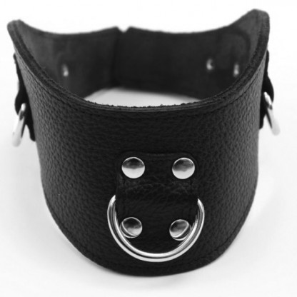 Profiled Leather Slave Collar