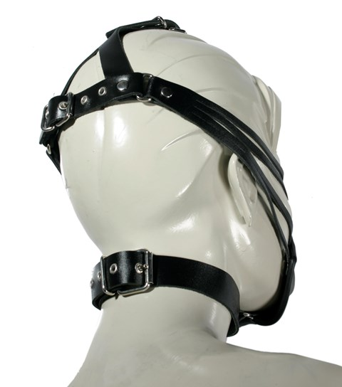 Leather Bondage Mask with Head Harness