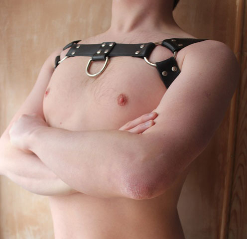 BDSM Bulldog Harness