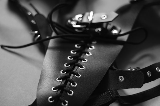 Restrictive Harness with Lacing