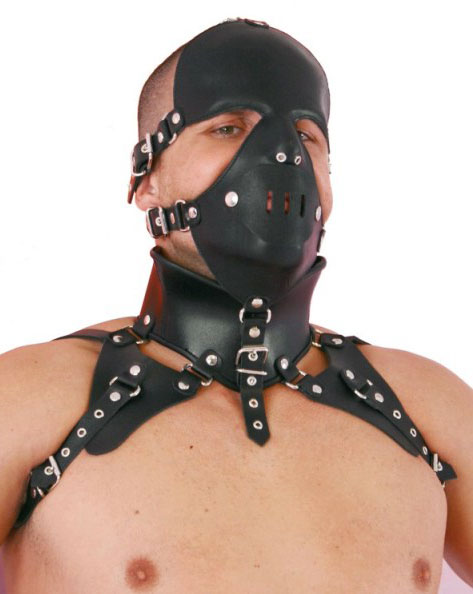 Head Harness with Posture Collar and Panel Gag